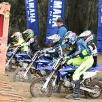 YZ65 Cup announced