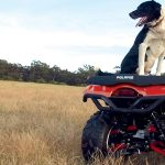 POLARIS TO EXIT AUSSIE QUAD BIKE MARKET